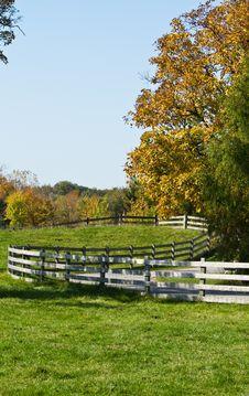 Free Autumn Farm Pasture Stock Photos - 16555833
