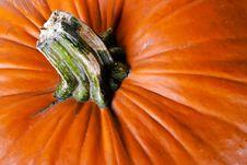 Free Pumpkin V4 Royalty Free Stock Photos - 16556228