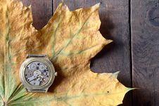 Free Autumn Time Royalty Free Stock Photos - 16556268