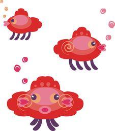 Free Amazing Fishes Stock Image - 16556311