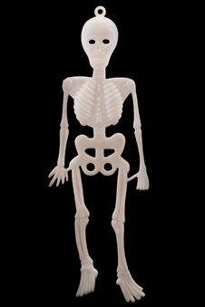 Free White Plastic Skeleton Over Black Royalty Free Stock Images - 16557719