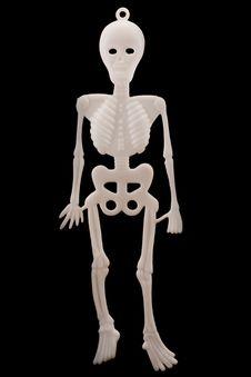 Free White Plastic Skeleton Over Black Royalty Free Stock Images - 16557719