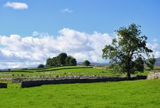 Summer Fields & Drystone Walls Near Shap Stock Images