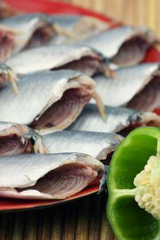 Free Fresh Fish Royalty Free Stock Photo - 16558595