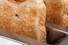 Free Toaster Stock Image - 16559211