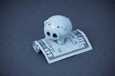 Free Miniature Piggy On Money Royalty Free Stock Photos - 16563378