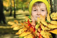 Free Foliage And Boy Royalty Free Stock Photo - 16564815