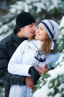 Beautiful Couple In Winter Park. Stock Images