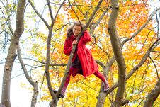 Free The Cheerful Girl In Autumn Stock Images - 16566714