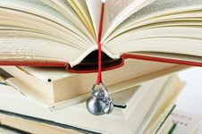 Free Stack Of Used Books With A Hand-made Bookmark Stock Photos - 16567143