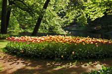 Free Beautiful Sunny Morning At The Keukenhof Gardens Royalty Free Stock Image - 16567176