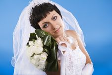 Free One Happy And Beautiful  Bride Royalty Free Stock Photography - 16568537