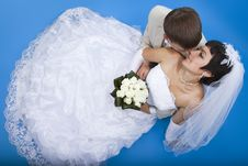 Groom And Beautiful Bride Royalty Free Stock Photography