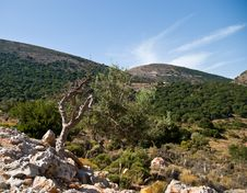 Free Crete . Royalty Free Stock Photography - 16569317