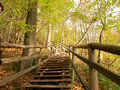 Free Stairs Royalty Free Stock Photography - 16575237