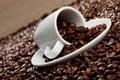Free Espresso Royalty Free Stock Photo - 16577015