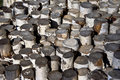 Free Birch Logs Royalty Free Stock Image - 16577366