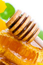 Free Honeycomb And Dipper Stock Photography - 16579052