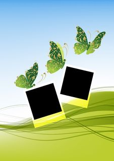 Green Background With Beautiful Butterflies Royalty Free Stock Images