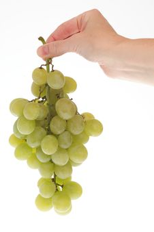 Free White Grape Cluster Royalty Free Stock Photos - 16571628