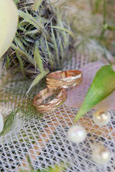 Free Wedding Rings Stock Photo - 16573200