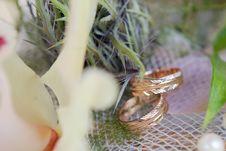Free Gold Wedding Rings Stock Image - 16573221