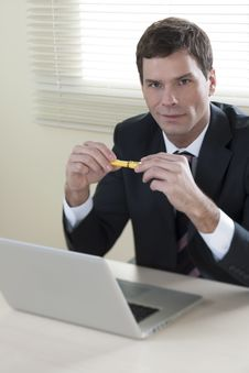 Free Businessman Working On Laptop Royalty Free Stock Images - 16574919