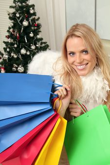 Free Christmas Shopping Royalty Free Stock Image - 16575716