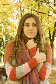 Free Autumn Portrait Stock Photography - 16576532