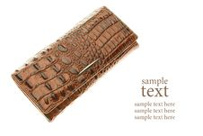 Free Brown Leather Purse Royalty Free Stock Photos - 16576608