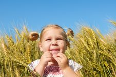 Free Laughing Kid In Sunny Wheat Field Stock Images - 16577844