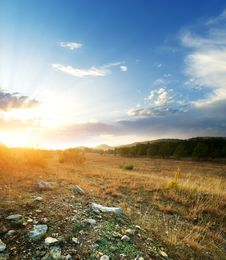 Sunset And Big Green Meadow Royalty Free Stock Image