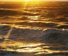 Free Golden Wave Stock Image - 16578431