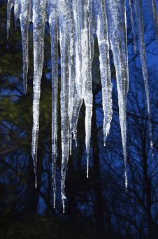 Free Winter Twilight S Ice Royalty Free Stock Photos - 16578728