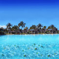 Free Tropical Beach Stock Images - 16580114