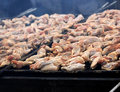 Free BBQ Chicken Wings Royalty Free Stock Photography - 16584087