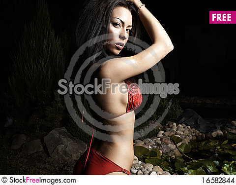 Free Beautiful Healthy Fit Woman. Stock Images - 16582844