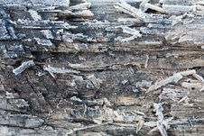 Free Wooden Surface Covered With Frost Royalty Free Stock Image - 16580156