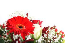 Free Flowers Royalty Free Stock Images - 16580509