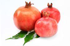 Free Pomegranates Royalty Free Stock Photos - 16580868