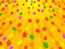 Free Bright Background Of Autumn Leaves Stock Photos - 16581023