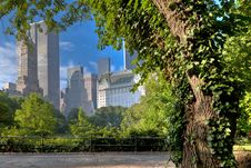Free VIew Of Central Park South Royalty Free Stock Images - 16581149