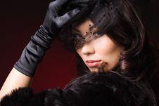 Free Elegant Fashionable Woman Stock Photo - 16581660