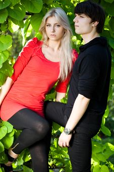 Free Couple - Girl And Guy Stock Photography - 16581942