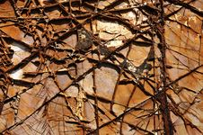 Free Textured Cracked Rock Stock Image - 16585611