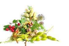 Free Autumn Bouquet Royalty Free Stock Image - 16589216