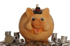 Piggy Bank On Coins Stock Images