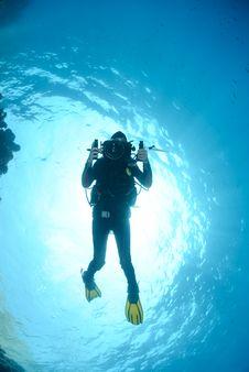 Female Scuba Diver And Underwater Video Equipment. Stock Images