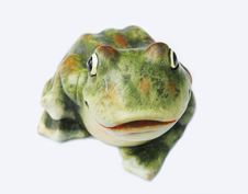 Free Frog Stock Photography - 1664862