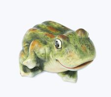 Free Frog Stock Photos - 1664863